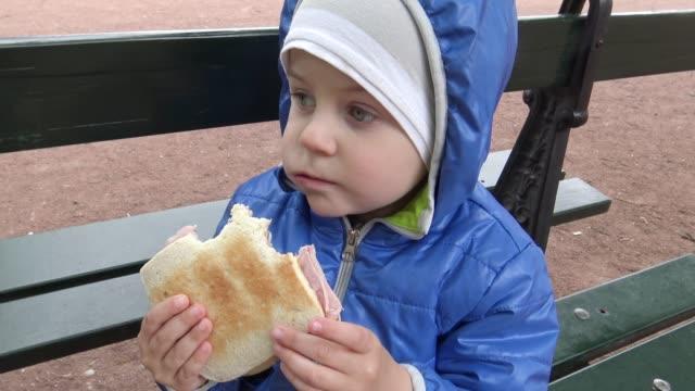 kleiner junge ein sandwich zu essen, im park - geschützte naturlandschaft stock-videos und b-roll-filmmaterial