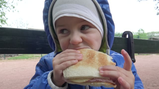 little boy eating a sandwich in park - sandwich stock videos & royalty-free footage