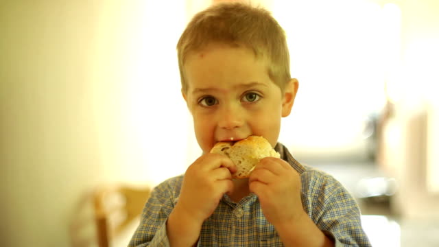 Little boy eating a slice of bread