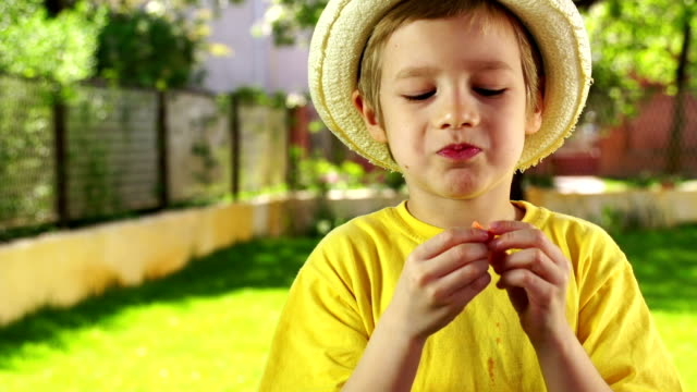 little boy eating strawberry - straw hat stock videos & royalty-free footage