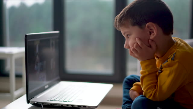 little boy having a video conference for distance learning kindergarten - children stock videos & royalty-free footage