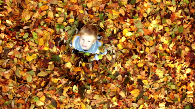 crane shot: little boy having fun with autumn leaves - autumn stock videos & royalty-free footage
