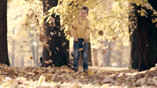 Little boy having fun with autumn leaves