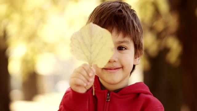 Ragazzino divertendosi con foglie