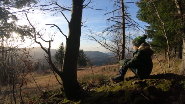 little boy hiker looking at view - imgorthand stock videos & royalty-free footage