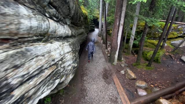 リトル・ボーイズ・ハイキング・アット・アサバスカ・フォールズ、ジャスパー国立公園、カナダ - ジャスパー国立公園点の映像素材/bロール