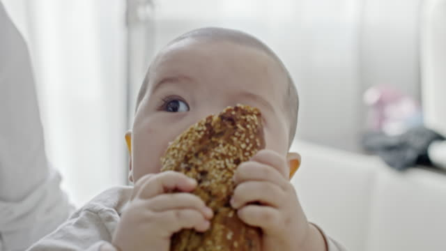 little boy nibbling on whole wheat bread - eurasian ethnicity stock videos and b-roll footage