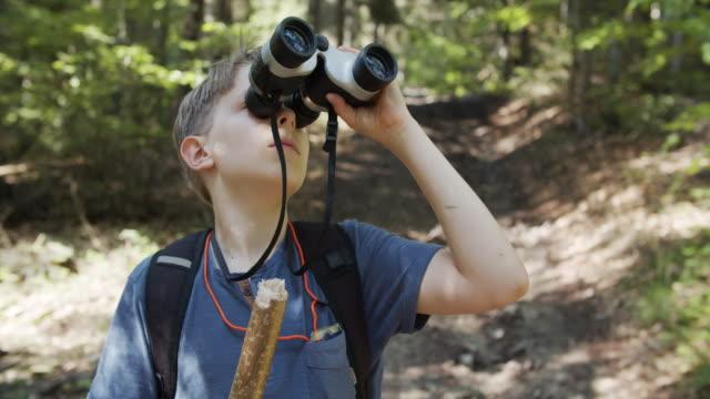 vídeos y material grabado en eventos de stock de niño observando aves en el bosque - aventura