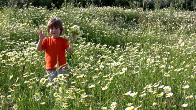 vidéos et rushes de petit garçon cueillir des fleurs - petits garçons
