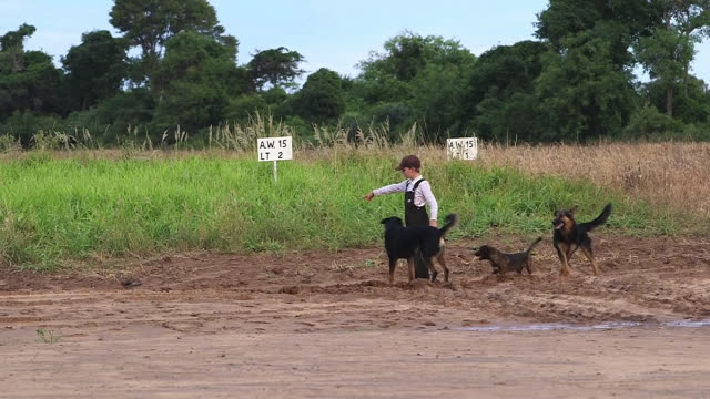 vídeos de stock e filmes b-roll de ws little boy playing with dog / manitoba community, close to santa cruz de la sierra, bolivia - amish