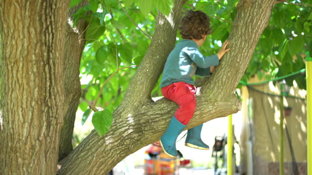 little boy playing with tree uploaded in it - ein junge in gummistiefel stock-videos und b-roll-filmmaterial