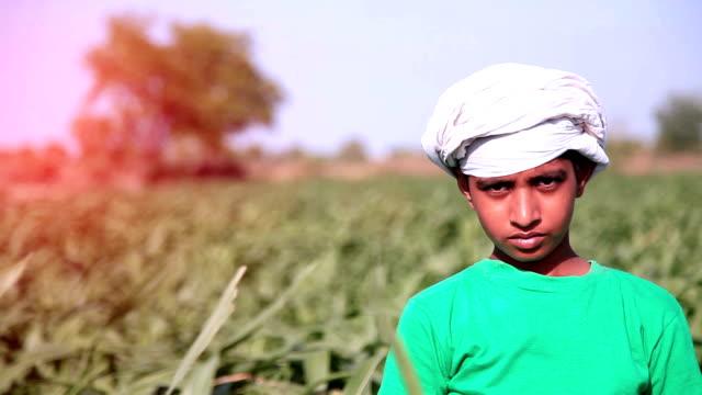 little boy portrait - sorghum stock videos & royalty-free footage