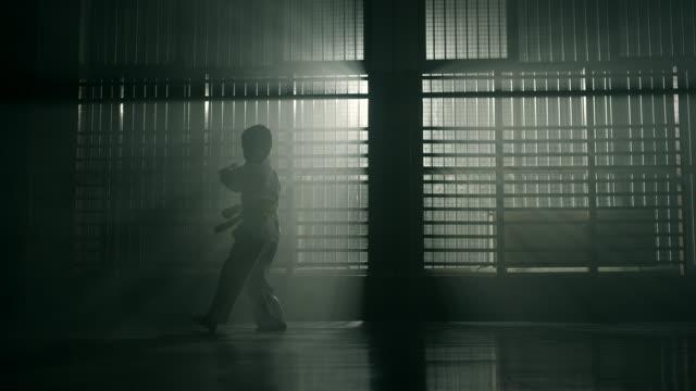 vídeos de stock, filmes e b-roll de menino praticando artes marciais - karate
