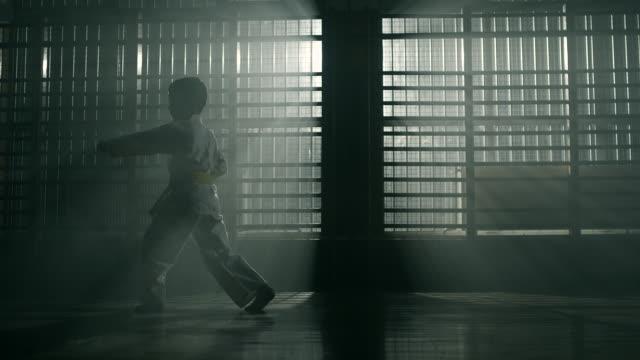 vídeos de stock, filmes e b-roll de artes marciais praticando do rapaz pequeno - karate