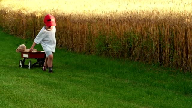 little boy pulls a red wagon with teddy bear - teddy boy stock videos & royalty-free footage