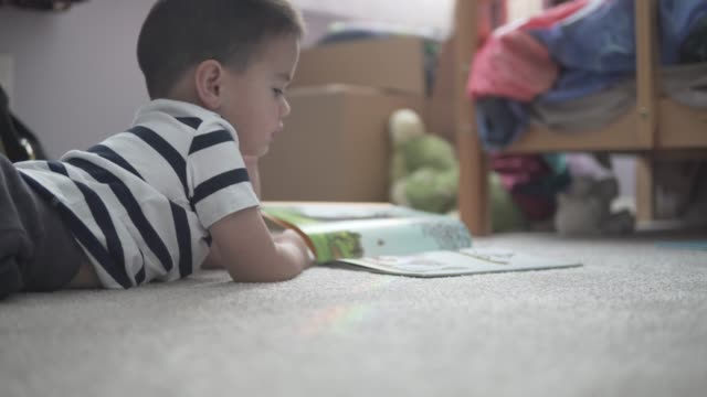 little boy reading a book in his bedroom - preschool child stock videos & royalty-free footage