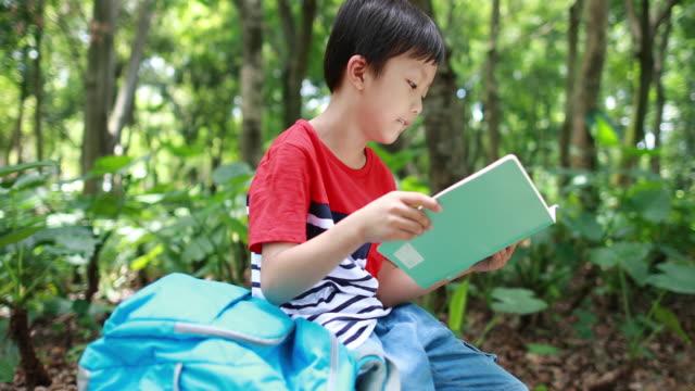 vidéos et rushes de petit garçon lisant un livre - cartable