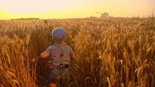 vidéos et rushes de slo missouri petit garçon courir dans un champ de culture - casquette