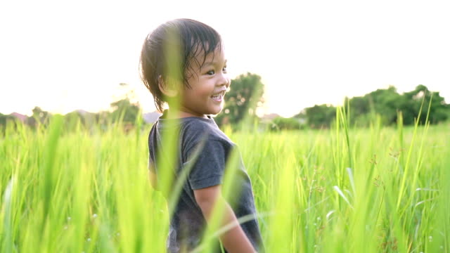 slo mo little boy running in high grass with back lit. - solo un bambino maschio video stock e b–roll