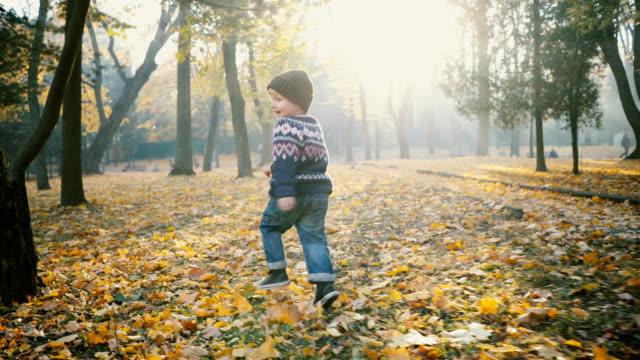 kleiner junge läuft im park im herbst - kopfbedeckung stock-videos und b-roll-filmmaterial