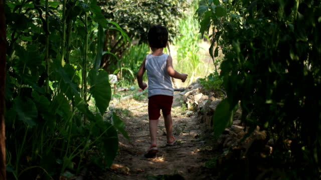 vidéos et rushes de petit garçon fonctionnant - fleur sauvage