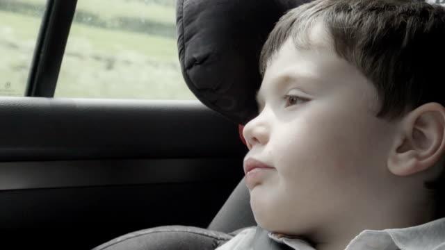 Little Boy Travelling In A Car
