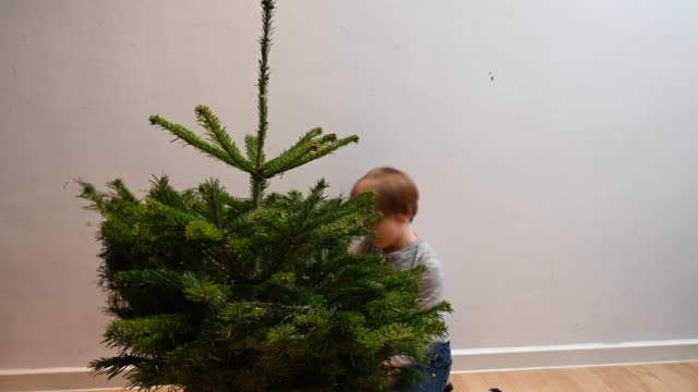 little boy unpacking the christmas tree. child cutting the net that wraps around the christmas tree in the living room of his house. it's almost christmas and will decorate the tree. 4k time lapse - decorating the christmas tree stock videos & royalty-free footage