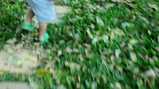 little boy walking in the garden - dorso umano video stock e b–roll
