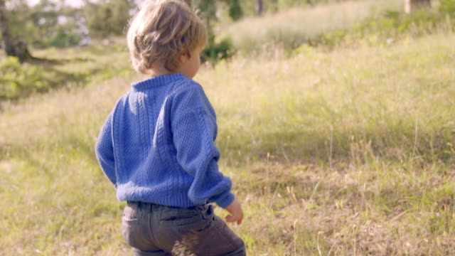 little boy walks through meadow - preschool child stock videos & royalty-free footage