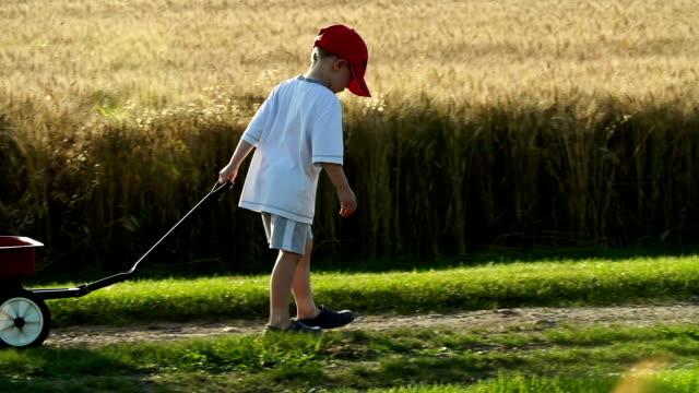 vídeos y material grabado en eventos de stock de little boy with a red wagon, carretera de campo - salirse de lo normal