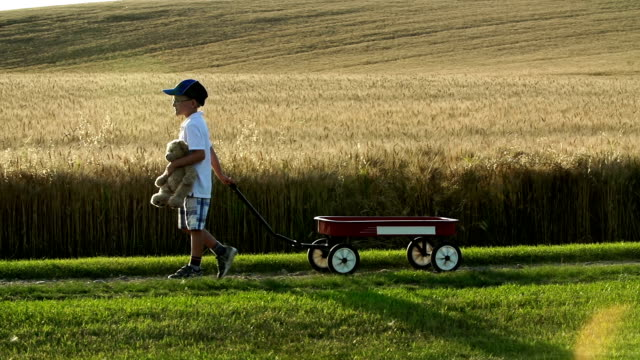 little boy with a red wagon, country road - teddy boy stock videos & royalty-free footage
