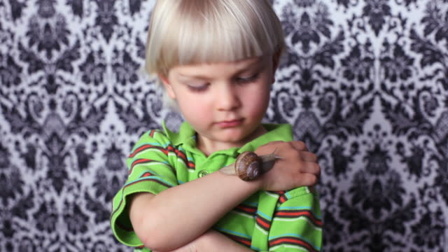 vídeos de stock, filmes e b-roll de menino com um caracol romano - caracol