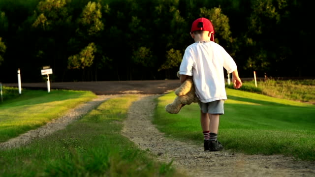 little boy with teddy bear on country road. - teddy bear stock videos and b-roll footage