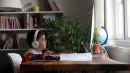 Little boys attending to online school class.
