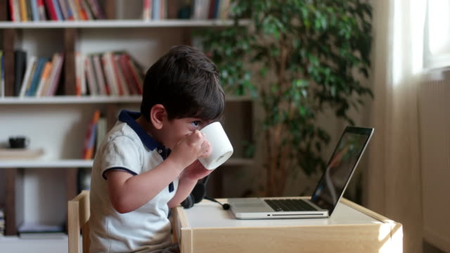 little boys attending to online school class. - science and technology stock videos & royalty-free footage