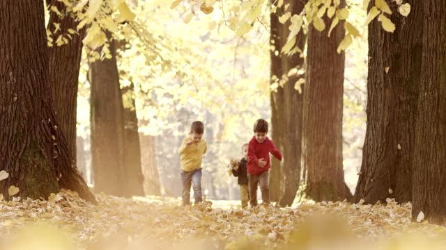 Kleine Jungen Kinder Laufen in den park