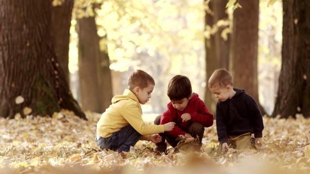 Piccolo ragazzo divertendosi con foglie autunnali