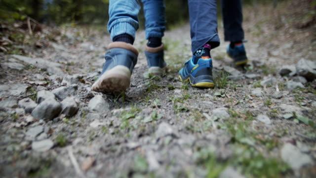 små pojkar vandring i vårskog - fotvandra bildbanksvideor och videomaterial från bakom kulisserna