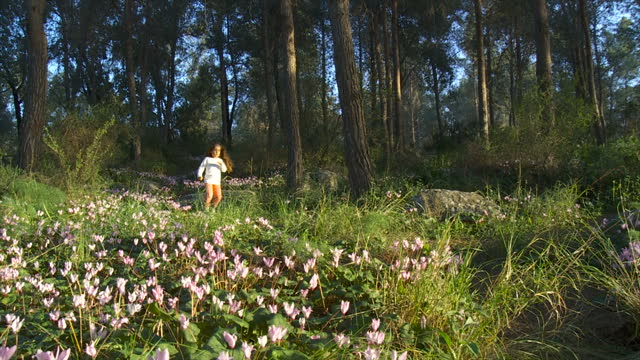 Little child girl happily running in a forest with wild flowers- Cyclamens bloom, Israel