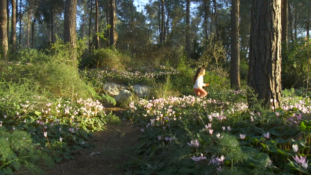 little child girl happily running in a forest with wild flowers- cyclamens bloom, israel - uncultivated stock videos & royalty-free footage