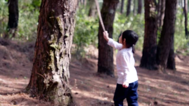 Little children playing in the pine tree forest
