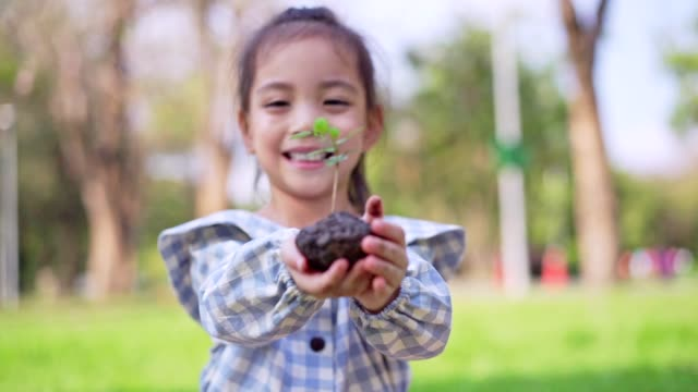 vídeos de stock e filmes b-roll de little cute asian girl give small plant to mother,save the earth concept. - environmental conservation