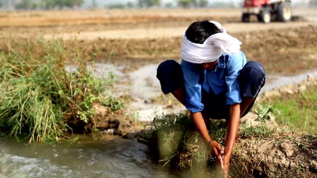 stockvideo's en b-roll-footage met kleine boer - irrigatiesysteem
