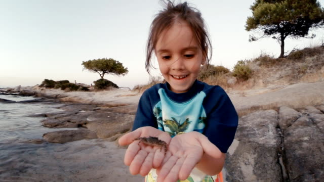 little girl and crab at the beach. learning process. - exploration stock videos and b-roll footage