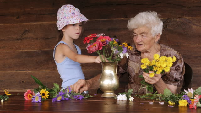 vídeos de stock e filmes b-roll de cu pan little girl and grandmother  arranging flowers in a vase. real people, rural scene. - 4 5 anos