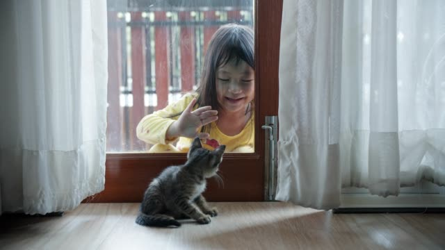Little girl and her kitten