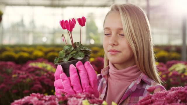 liten flicka på växthus - trädgårdshandske bildbanksvideor och videomaterial från bakom kulisserna