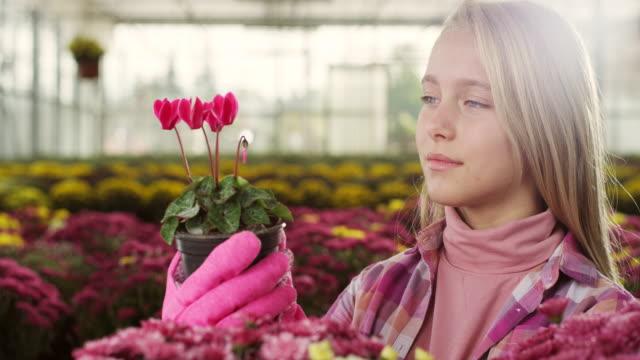 vídeos de stock, filmes e b-roll de menina em estufa - canteiro de flores