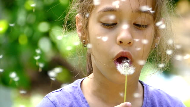 little girl blowing dandelion and making a wish-slowmotion - dandelion stock videos & royalty-free footage