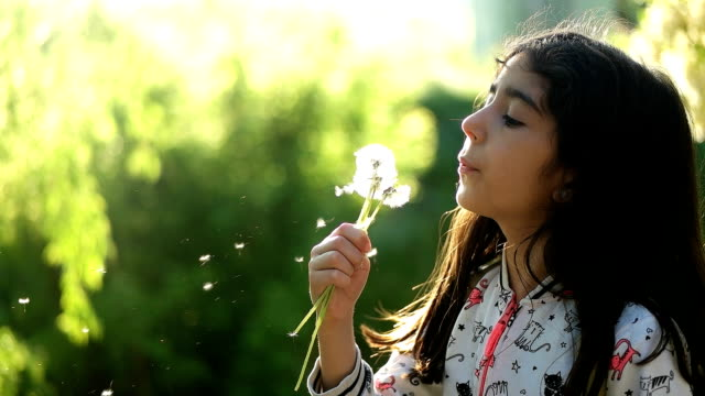 little girl blowing dandelion - middle east stock videos & royalty-free footage